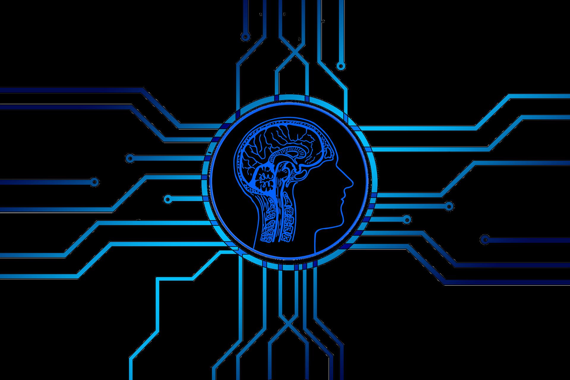 Artificial Intelligence Neural Networks For EMR Software