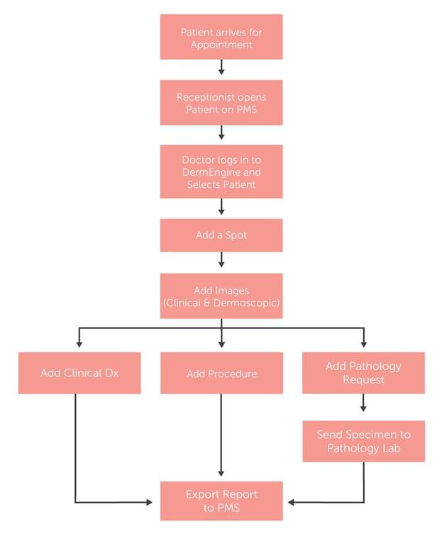 DermEngine EMR Ingetration Workflow